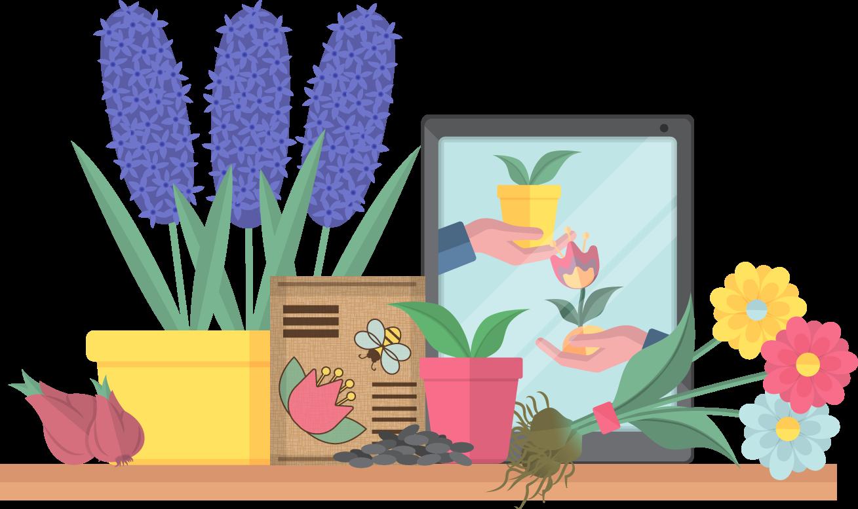 Flower swap illustration
